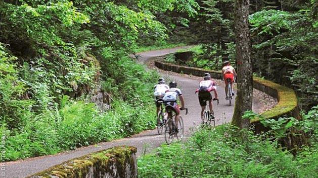 Séjour vélo de route en Alsace