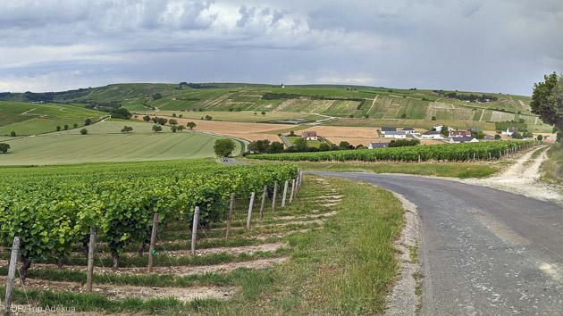 Découvrez les plus beaux itinéraires cyclo du Val de Loire