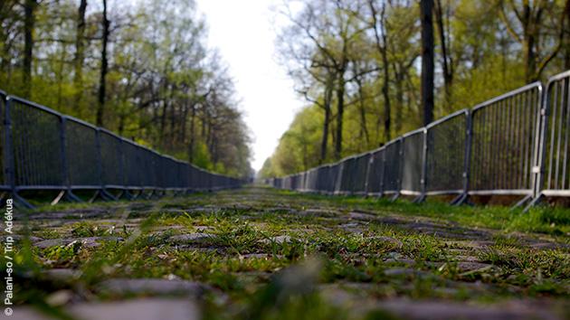 Les routes pavés à dominer à vélo lors de ce séjour Paris Roubaix