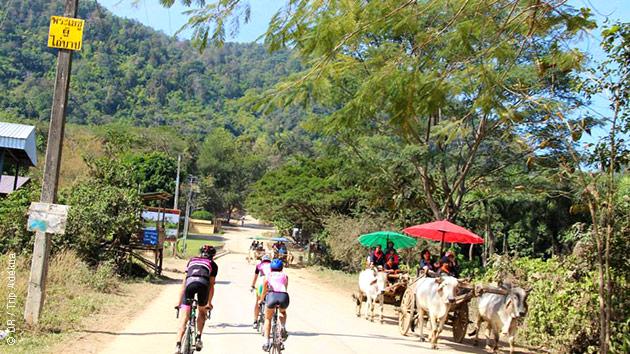 Un stage cycliste avec encadrement, logé dans des hôtels 3 étoiles et escorté par un bus, dans le sud de la Thaïlande