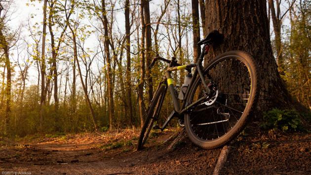 Le gravel pour découvrir l'Alsace entre vélo de route et VTT