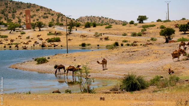 Vallée de l'Ourika, lac et barrage : les paysages magnifiques du Maroc vous accueillent pour ce court séjour cycliste