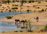 Jours 7 à 8 : Taroudant – Marrakech  - voyages adékua