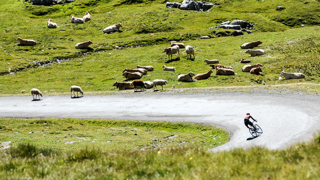 Découvrez les plus beaux paysages des Pyrénées pendant votre séjour vélo
