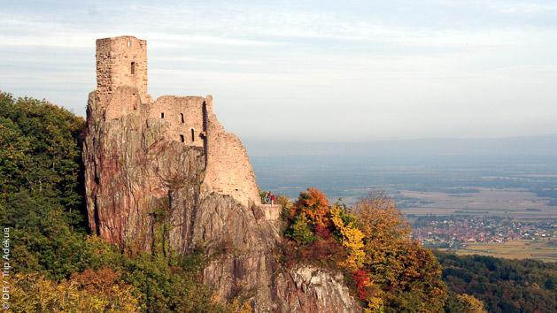 Découvrez les plus beaux itinéraires cyclo d'Alsace