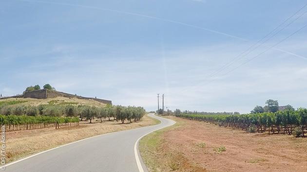 Ce circuit vélo de route dans la vallée du Douro vous est proposé avec un hébergement en hôtels de caractères 4 étoiles