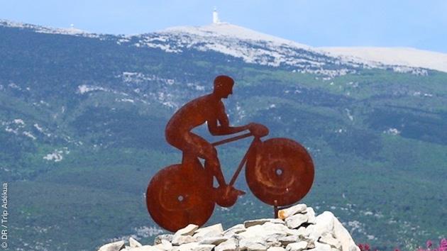 A l'assaut des cols du Mont Ventoux, et hébergées en gîte, vous roulez entre femmes guidées par un ancien cycliste pro