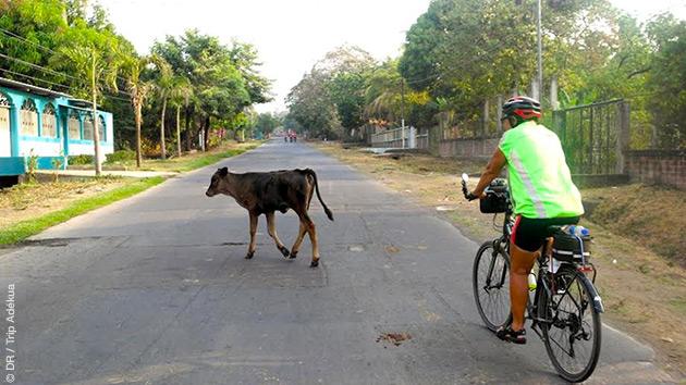 vélo de route en Amérique centrale